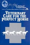 Veterinary Care for the Perfect Horse