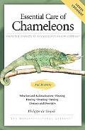 Essential Care of Chameleons