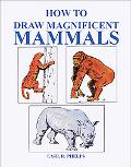 How to Draw Magnificent Mammals
