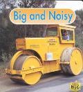 Big and Noisy