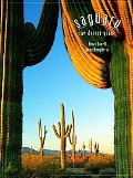Saguaros The Desert Giants