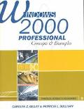 Windows 2000 Professional Concepts & Examples