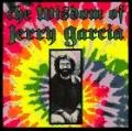 The Wisdom of Jerry Garcia as Collected from Interviews - David Gans - Paperback