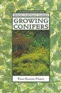 Growing Conifers Four/Season Plants