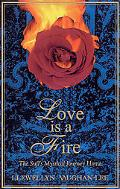 Love Is a Fire A Sufi's Mystical Journey Home