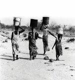 Water is Key: A Better Future for Africa (AUTHOR SIGNED)