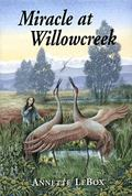 Miracle at Willowcreek