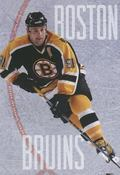 The Story of the Boston Bruins