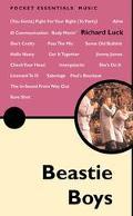 Beastie Boys The Pocket Essentials