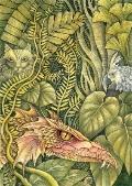 Beyond the Last Dragon : A Life of Edwin Morgan