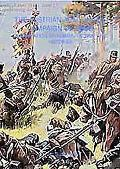 AUSTRIAN ARMY IN THE CAMPAIGN OF 1866, THE: Organisation, Uniforms, tactics, Commanders, Uni...