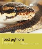 Ball Python (Royal Python) (Pet Expert)