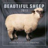 Beautiful Sheep 2013: Portraits of the Most Handsome Champion Breeds