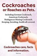 Cockroaches as Pets. Cockroaches Care, Facts and Information. Including German Cockroach, Am...