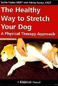 The Healthy Way to Stretch Your Dog: A Physical Therapy Approach