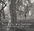 City in a Garden A Photographic History of Chicago's Parks