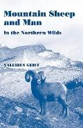 Mountain Sheep and Man in the Northern Wilds