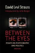 Between the Eyes Essays on Photography