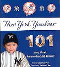 New York Yankees 101