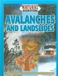 Avalanches and Landslides