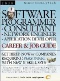 Software Programmer Consultant: Network Engineer, Application Developer 2008
