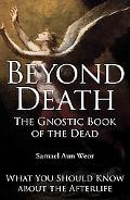 Beyond Death: The Gnostic Book of the Dead: What You Should Know about the Afterlife