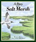 Day in the Salt Marsh