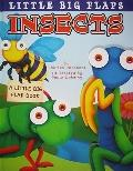 Insects Little Big Flap (Little Big Flap Books)