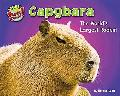 Capybara: The World's Largest Rodent (Supersized!)