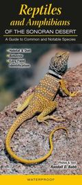 Reptiles and Amphibians of the Sonoran Desert : A Guide to Common and Notable Species