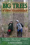 Big Trees of New Hampshire : Short Hikes to the Biggest Trees in New Hampshire from the Seac...