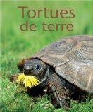 Tortues de terre (French Edition)