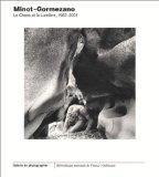 Minot-Gormezano : Le Chaos et la Lumire, 1983-2001