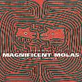 Magnificent Molas The Art of the Kuna Indians