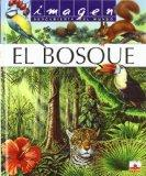 El bosque / the Forest (Imagen Descubierta Del Mundo) (Spanish Edition)
