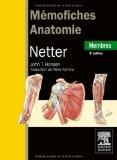 mmofiches anatomie Netter ; membres (3e dition) (French Edition)