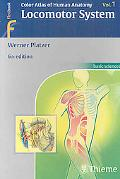 Color Atlas and Textbook of Human Anatomy: Vol 1: Locomotor System
