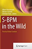 S-BPM in the Wild: Practical Value Creation
