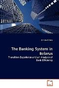 The Banking System in Belarus: Transition Experience and an Analysis of Bank Efficiency