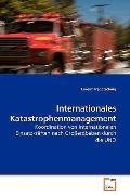 Internationales Katastrophenmanagement: Koordination von internationalen Einsatzkrften nach ...