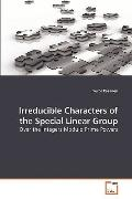 Irreducible Characters of the Special Linear Group: Over the Integers Modulo Prime Powers