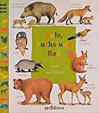 Eule, Fuchs und Reh. Tiere im Wald.
