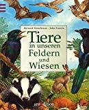 Tiere in unseren Feldern und Wiesen. (Ab 8 J.).