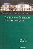 Novikov Conjecture Geometry And Algebra