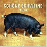Schne Schweine 2013