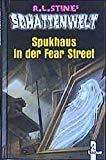 Schattenwelt. Spukhaus in der Fear Street. ( Ab 10 J.).