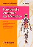 Funktionelle Anatomie des Menschen.