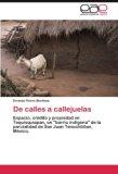 De calles a callejuelas: Espacio, crédito y propiedad en Tequisquiapan, un