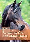 Caring for the Older Horse: How to Keep Your Veteran Fit and Healthy