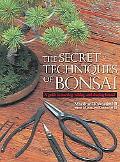 Secret Techniques of Bonsai A Guide to Starting, Raising, And Shaping Bonsai
